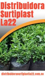 Distribuidora-surtiplast-la-22